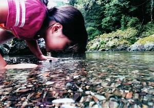 水中の世界