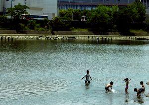 初夏の水遊び