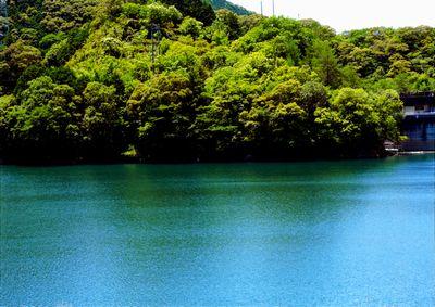 高知市の水がめ