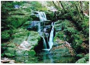 名無し滝では可愛そう 鏡川源流の滝と命名